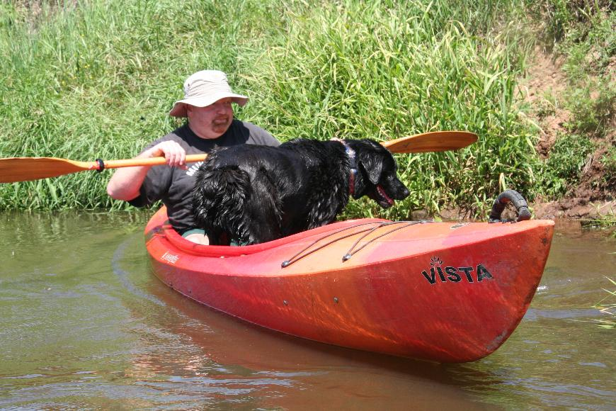 pies w kajaku IMG_9951