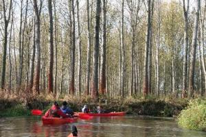 rzeka widawa kajak IMG_9375