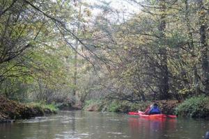 rzeka widawa kajak IMG_9483