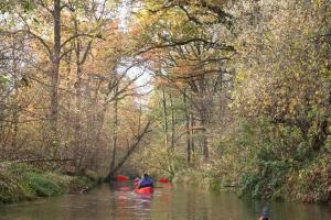 rzeka widawa kajak IMG_9486