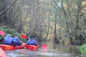 rzeka widawa kajak IMG_9532