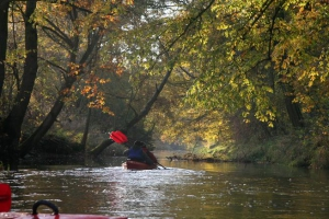 rzeka widawa kajak IMG_9544